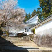 【福岡市】歴史や神社仏閣が好きな人限定パーティー
